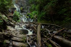 logs at the end of a waterfall