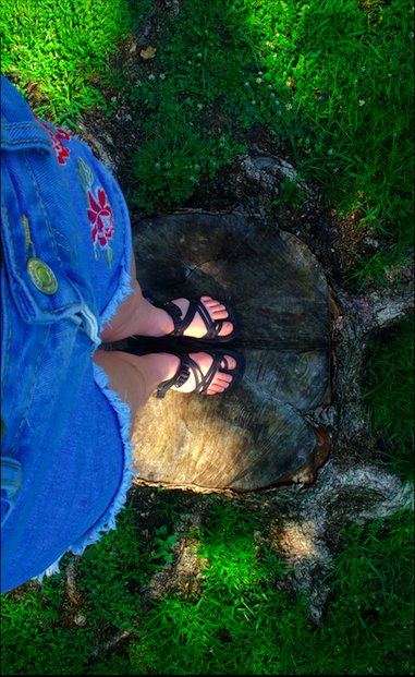 Feet on a treee stump