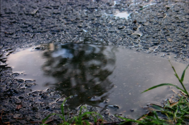 A puddle