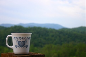 a cup in front of a veiw